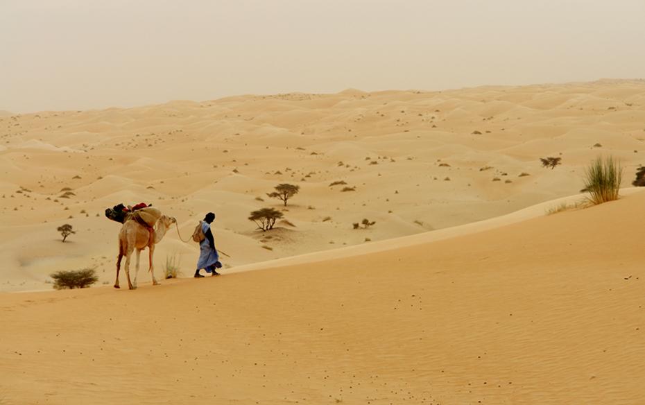 wueste_mauretanien.jpg