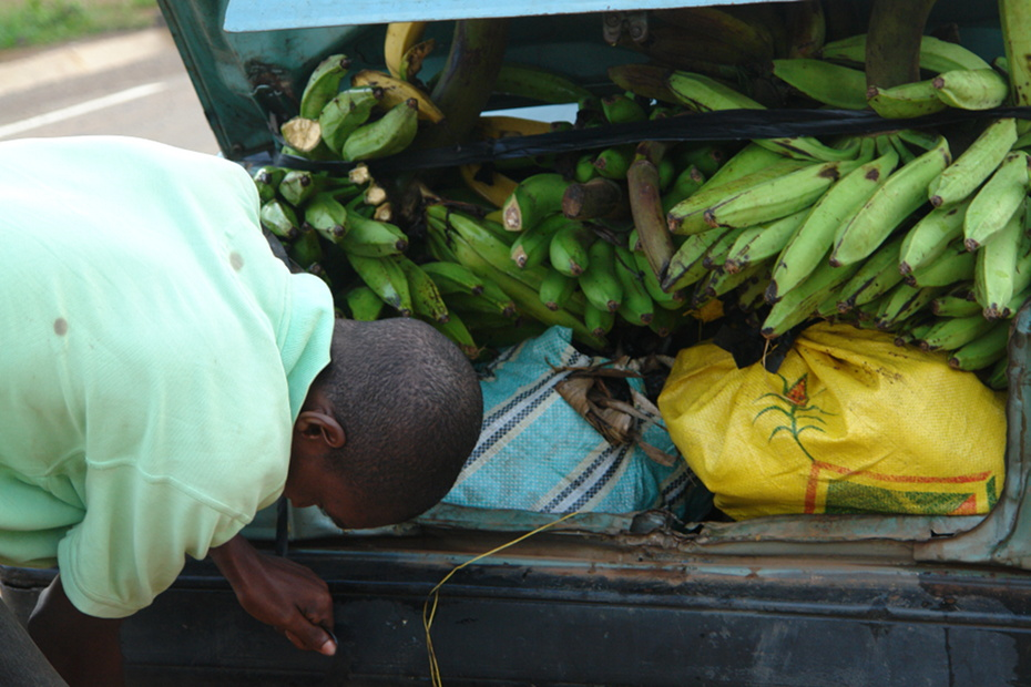 bananen_auto.jpg
