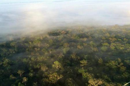 Amazonia's Flying Rivers