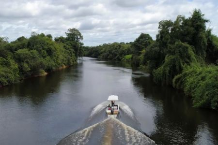 AMAZONIENS FLIEGENDE FLÜSSE